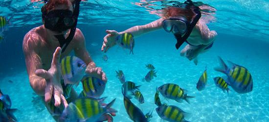 sendero-corales-cartagena